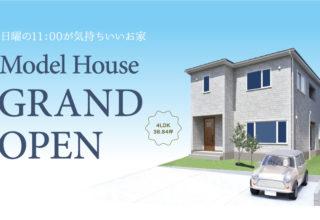 https://www.atlashouse.jp/tour/2021054062/の写真